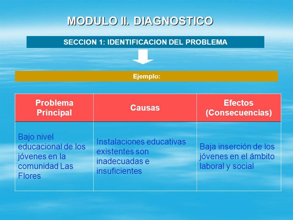 SECCION 1: IDENTIFICACION DEL PROBLEMA Efectos (Consecuencias)