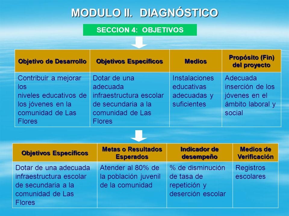 MODULO II. DIAGNÓSTICO SECCION 4: OBJETIVOS Contribuir a mejorar los