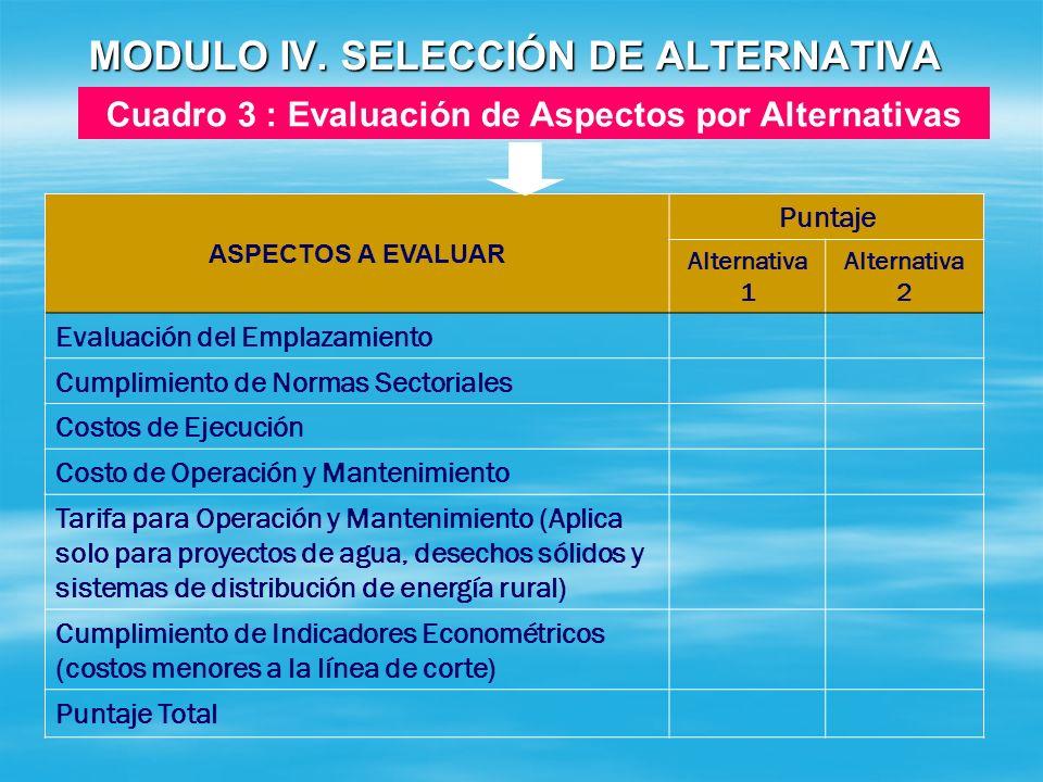 MODULO IV. SELECCIÓN DE ALTERNATIVA