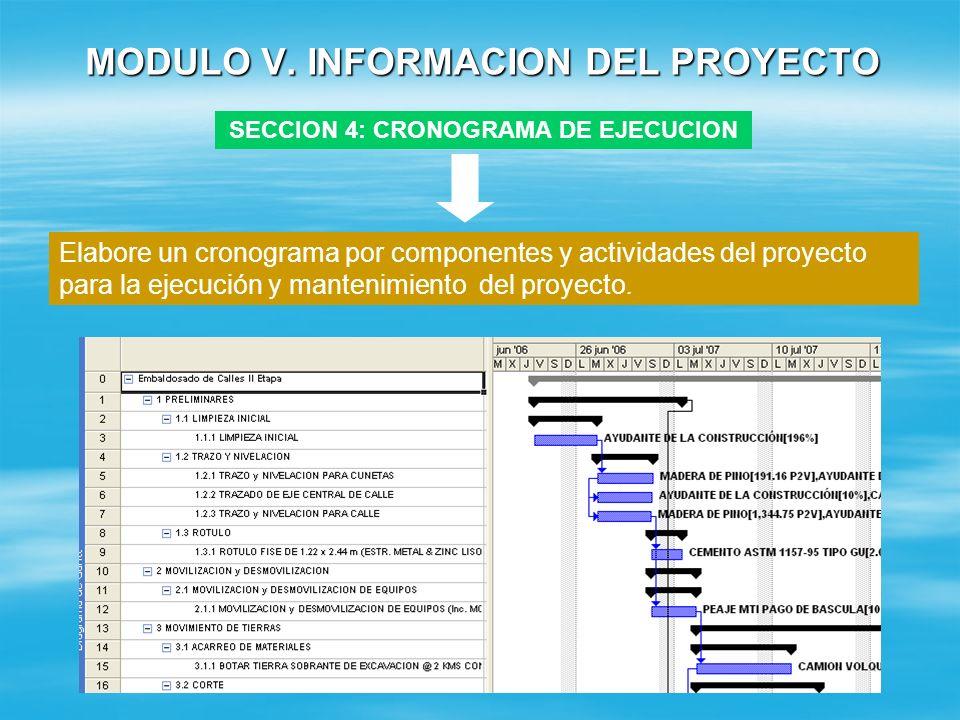 MODULO V. INFORMACION DEL PROYECTO