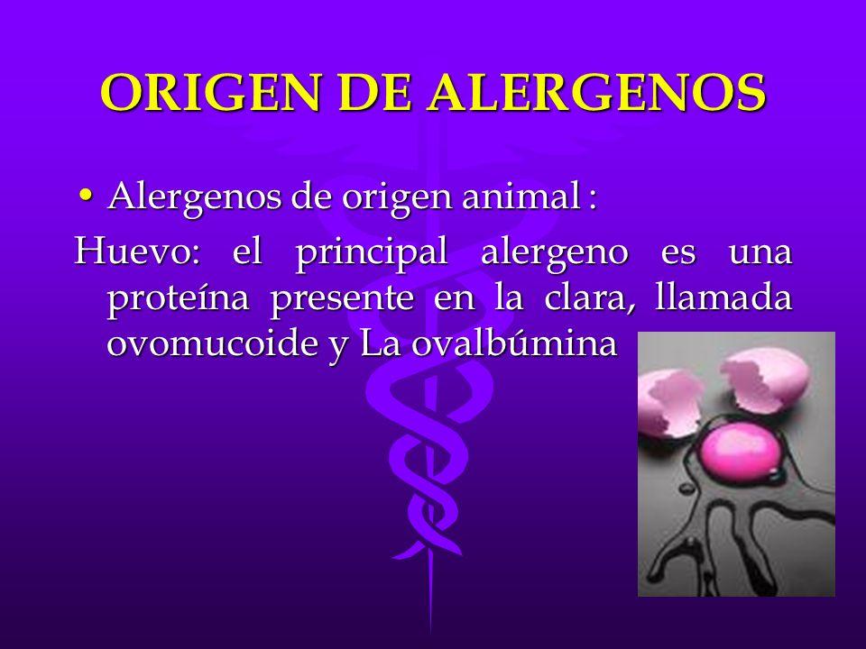 ORIGEN DE ALERGENOS Alergenos de origen animal :
