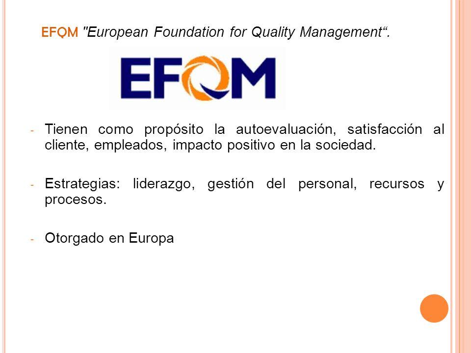 EFQM European Foundation for Quality Management .