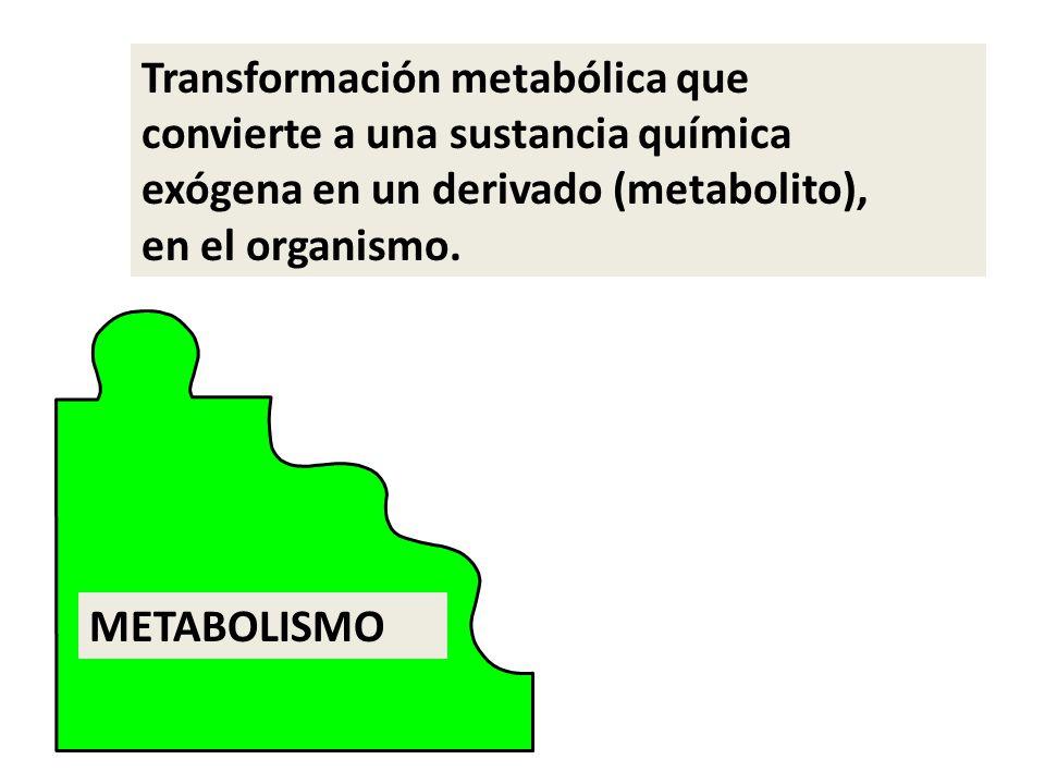 Transformación metabólica que