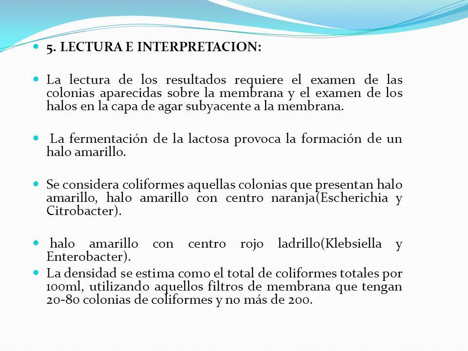 5. LECTURA E INTERPRETACION: