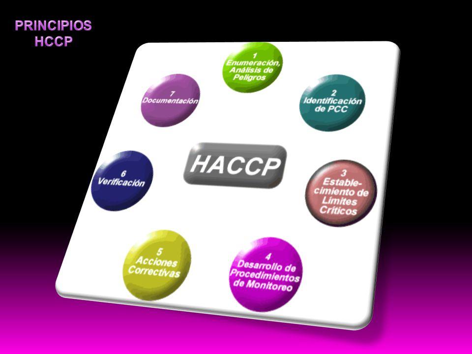 PRINCIPIOS HCCP