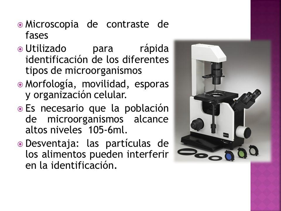 Microscopia de contraste de fases