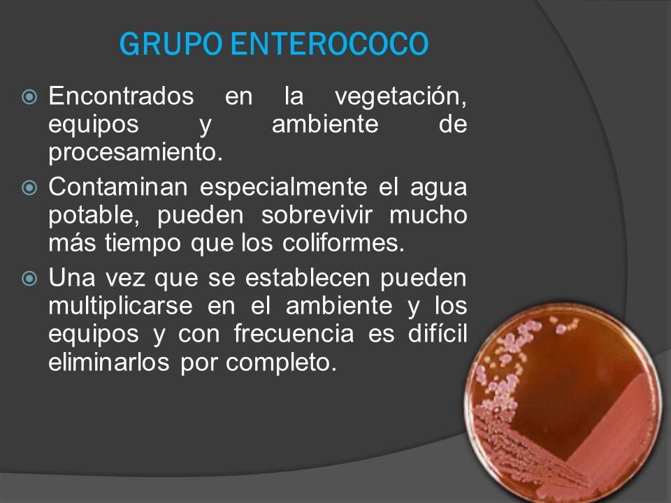 GRUPO ENTEROCOCO Encontrados en la vegetación, equipos y ambiente de procesamiento.