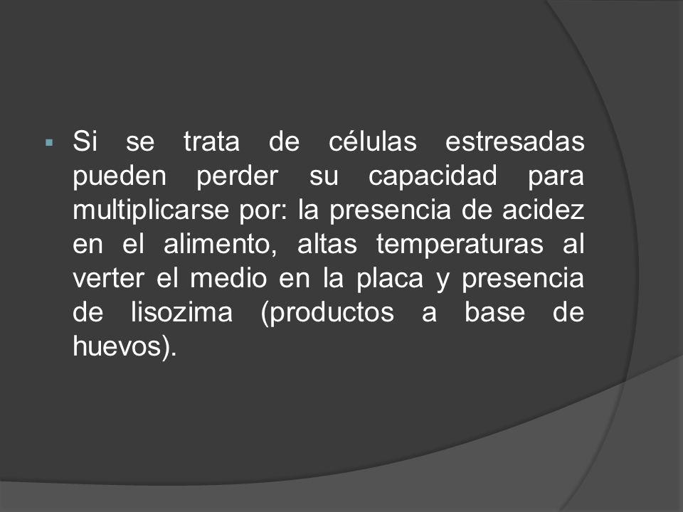 Si se trata de células estresadas pueden perder su capacidad para multiplicarse por: la presencia de acidez en el alimento, altas temperaturas al verter el medio en la placa y presencia de lisozima (productos a base de huevos).