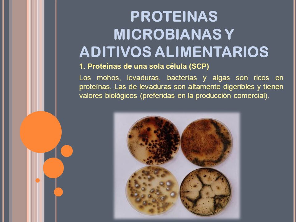 PROTEINAS MICROBIANAS Y ADITIVOS ALIMENTARIOS