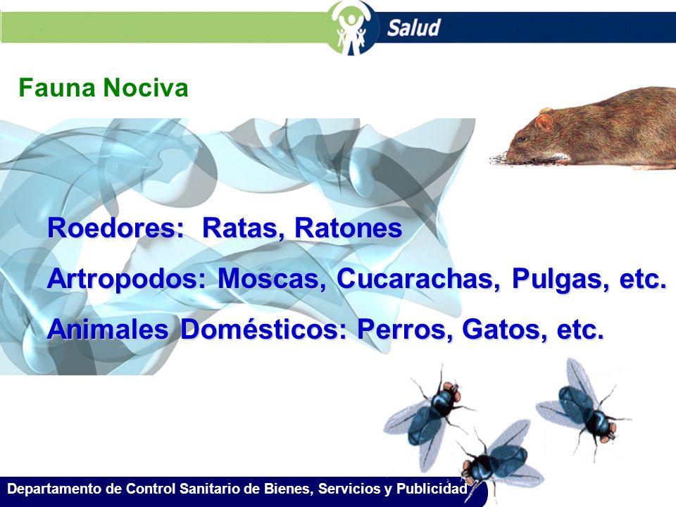 Roedores: Ratas, Ratones Artropodos: Moscas, Cucarachas, Pulgas, etc.
