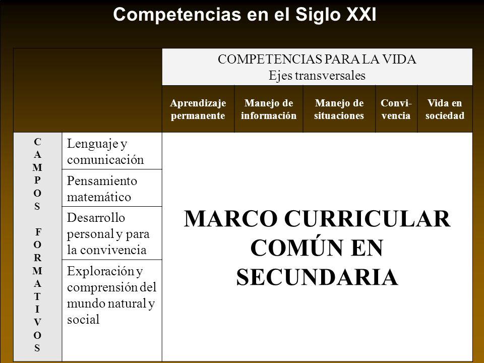 Aprendizaje permanente MARCO CURRICULAR COMÚN EN SECUNDARIA