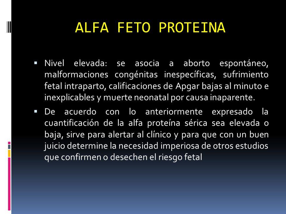 ALFA FETO PROTEINA