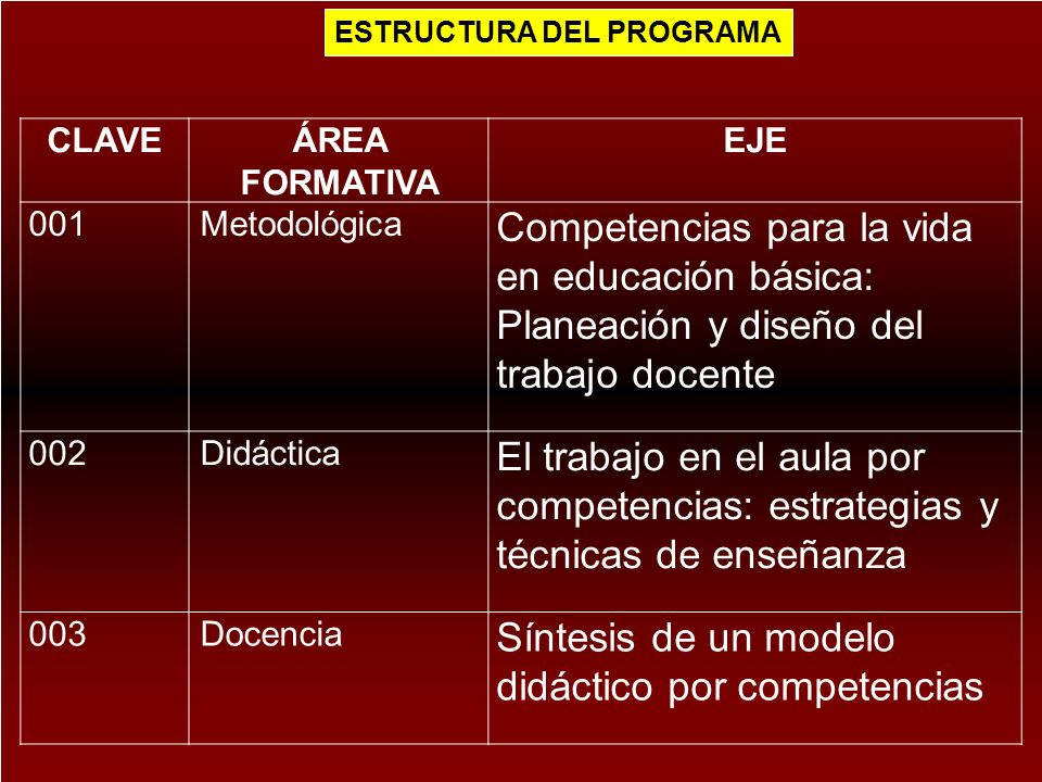 Síntesis de un modelo didáctico por competencias