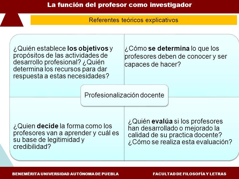 Profesionalización docente