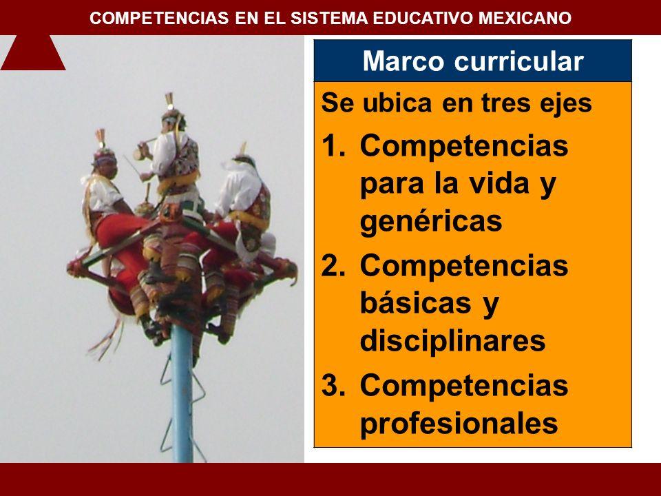 COMPETENCIAS EN EL SISTEMA EDUCATIVO MEXICANO
