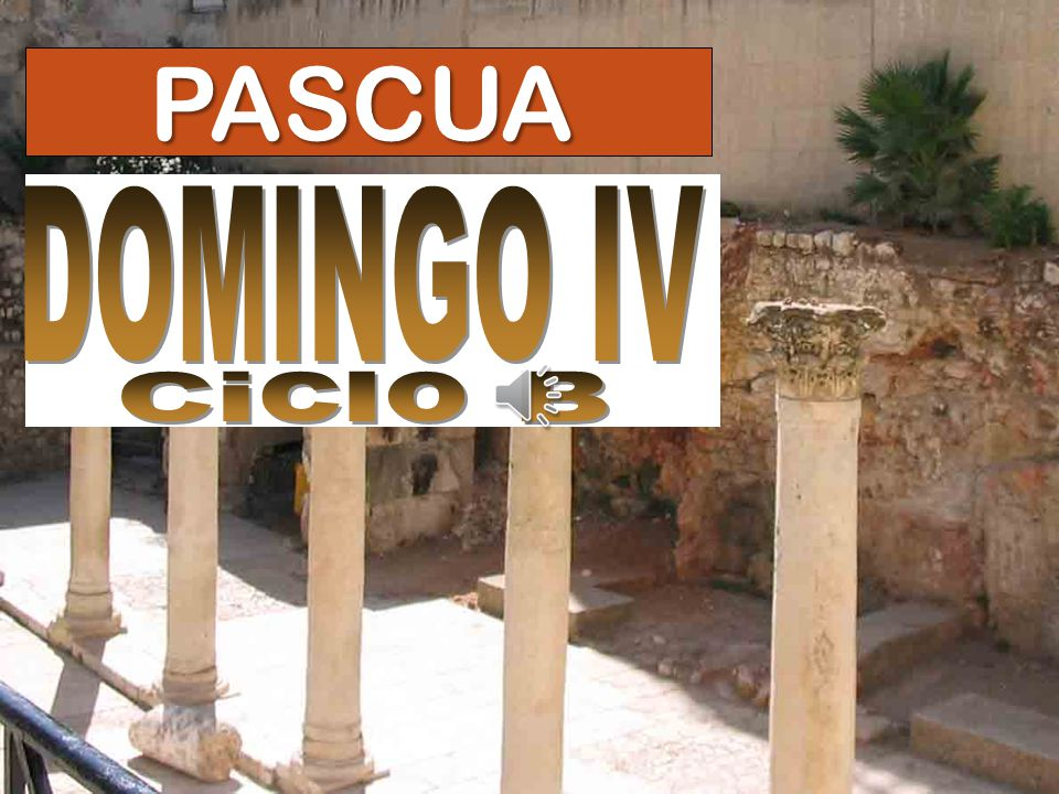 PASCUA DOMINGO IV Ciclo B