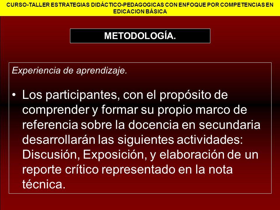 CURSO-TALLER ESTRATEGIAS DIDÁCTICO-PEDAGOGICAS CON ENFOQUE POR COMPETENCIAS EN EDICACION BÁSICA