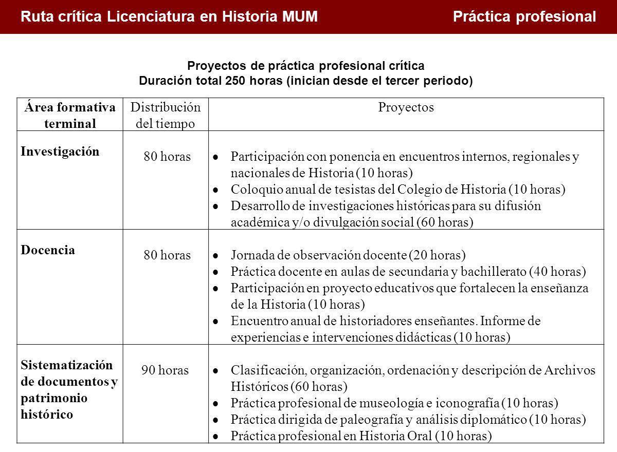 Ruta crítica Licenciatura en Historia MUM Práctica profesional