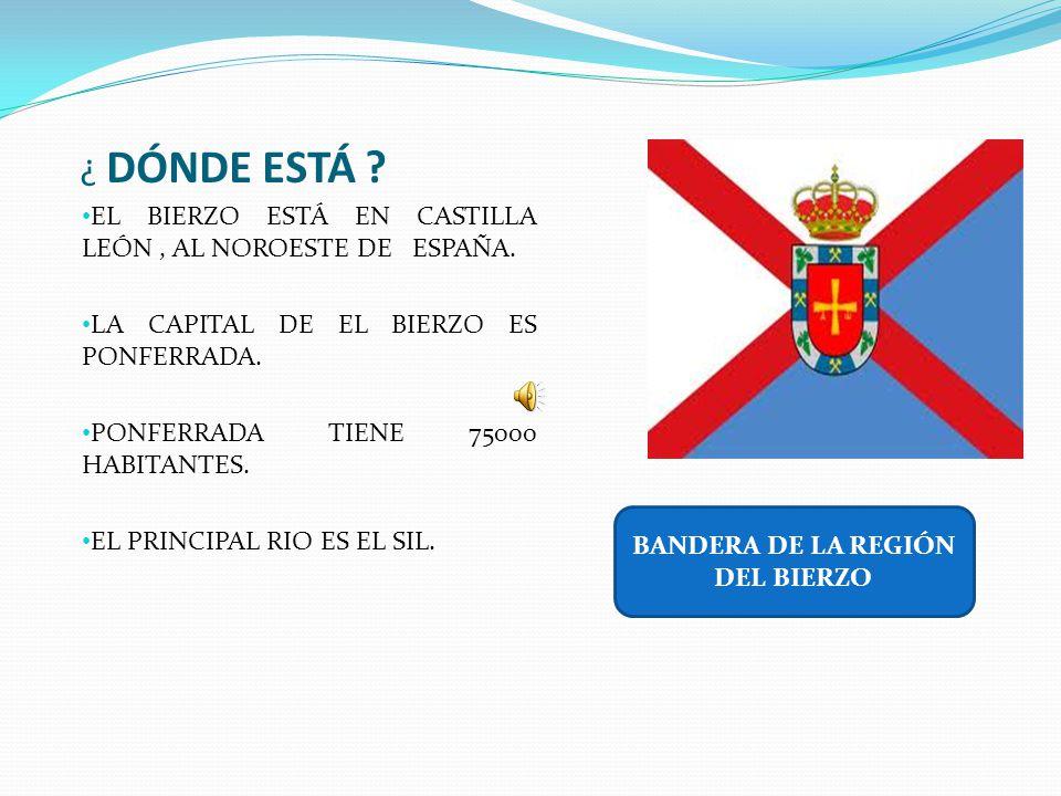 BANDERA DE LA REGIÓN DEL BIERZO