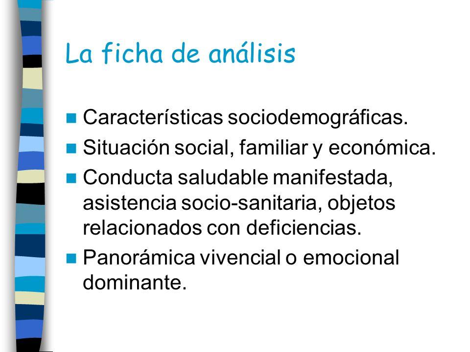 La ficha de análisis Características sociodemográficas.