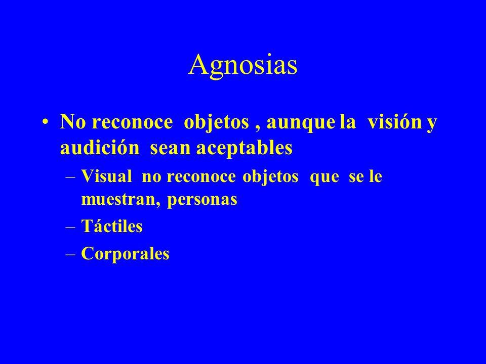 Agnosias No reconoce objetos , aunque la visión y audición sean aceptables. Visual no reconoce objetos que se le muestran, personas.