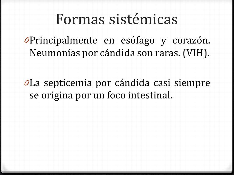 Formas sistémicas Principalmente en esófago y corazón. Neumonías por cándida son raras. (VIH).