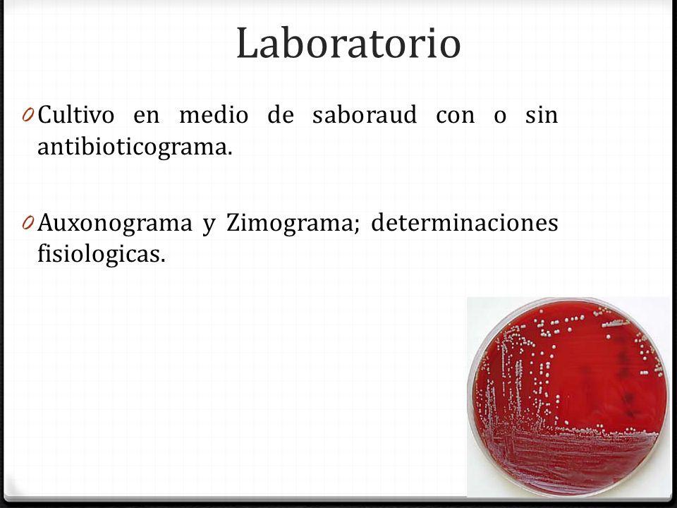 Laboratorio Cultivo en medio de saboraud con o sin antibioticograma.