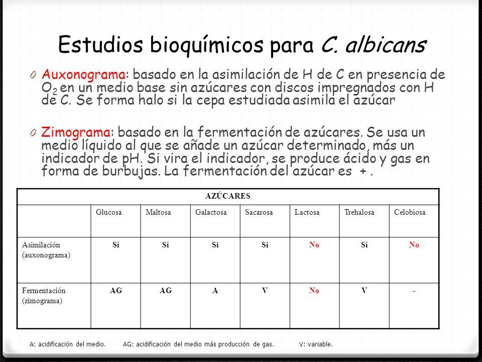 Estudios bioquímicos para C. albicans
