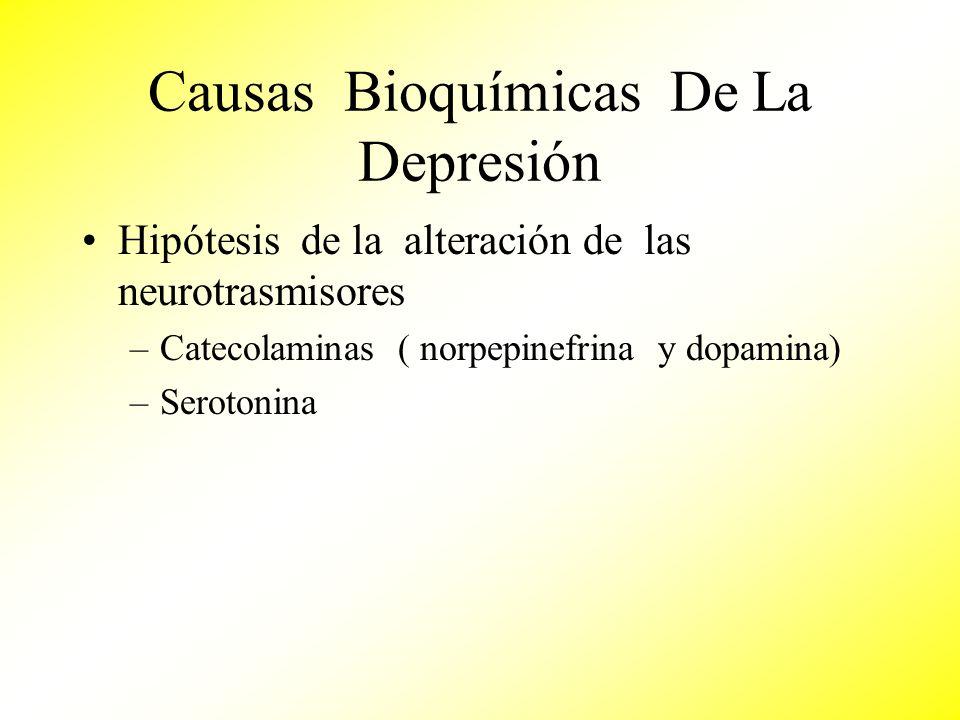 Causas Bioquímicas De La Depresión