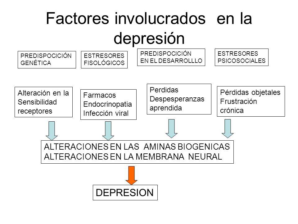 Factores involucrados en la depresión