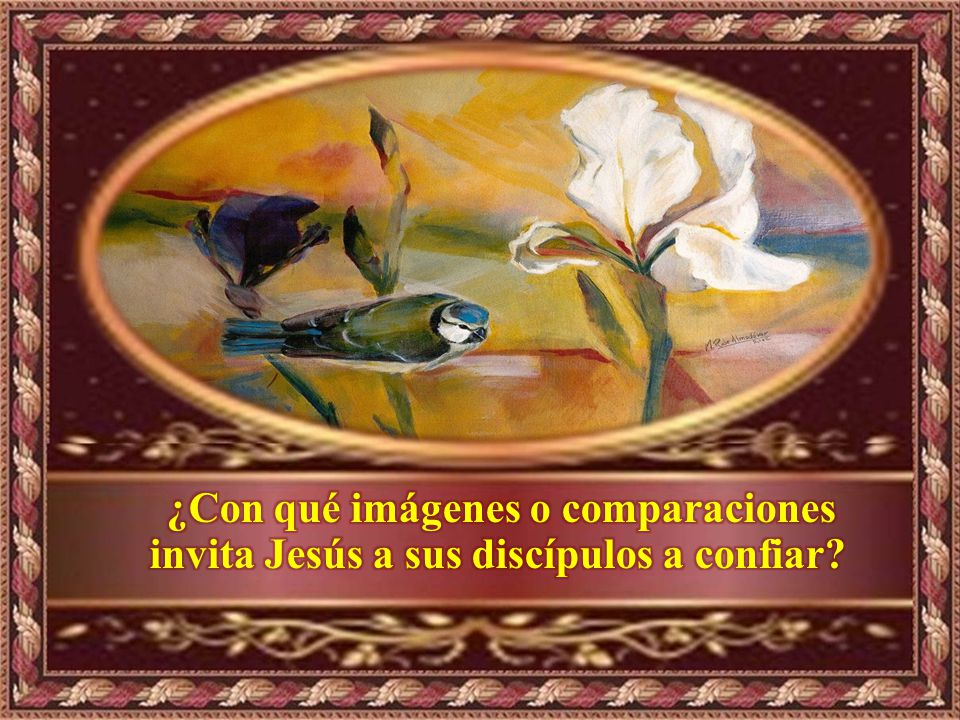 ¿Con qué imágenes o comparaciones invita Jesús a sus discípulos a confiar