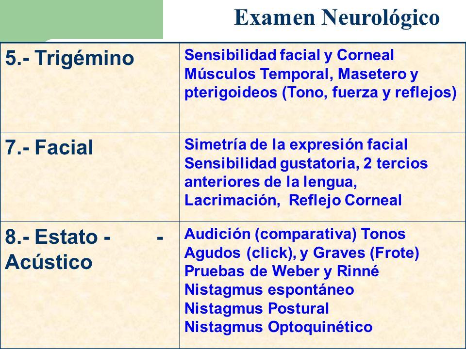 Examen Neurológico 5.- Trigémino 7.- Facial 8.- Estato - - Acústico