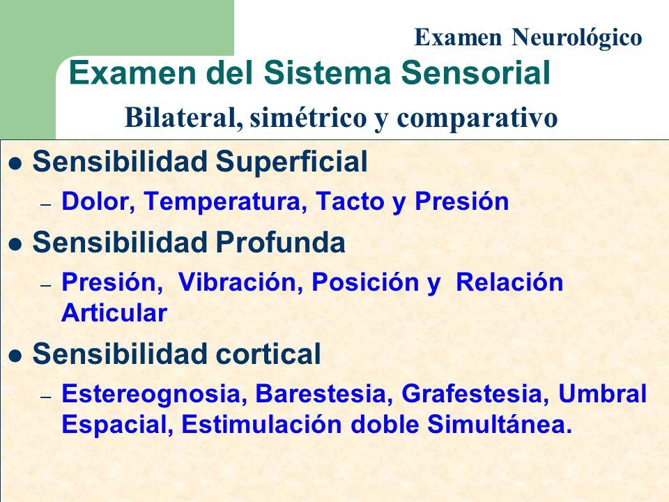 Examen del Sistema Sensorial