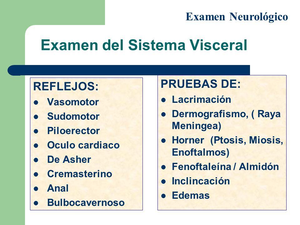 Examen del Sistema Visceral
