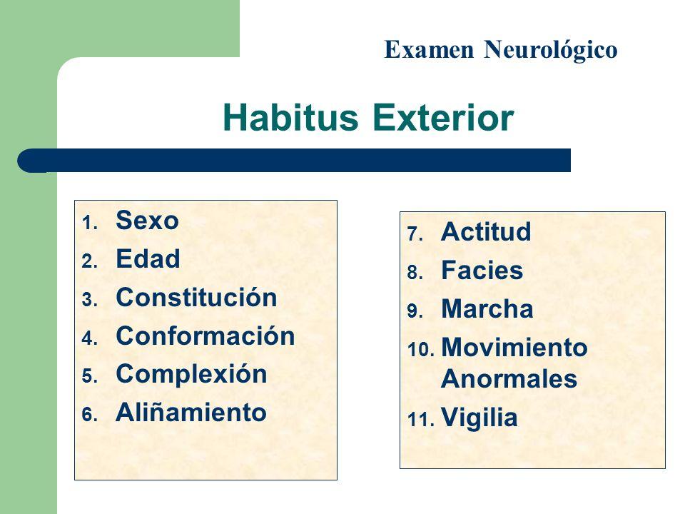 Habitus Exterior Examen Neurológico Sexo Actitud Edad Facies