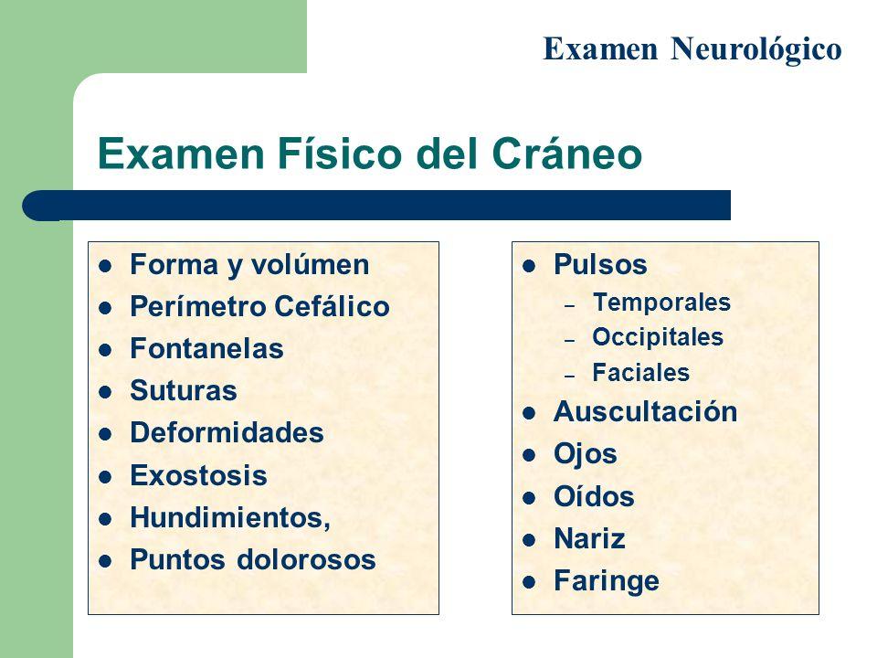 Examen Físico del Cráneo