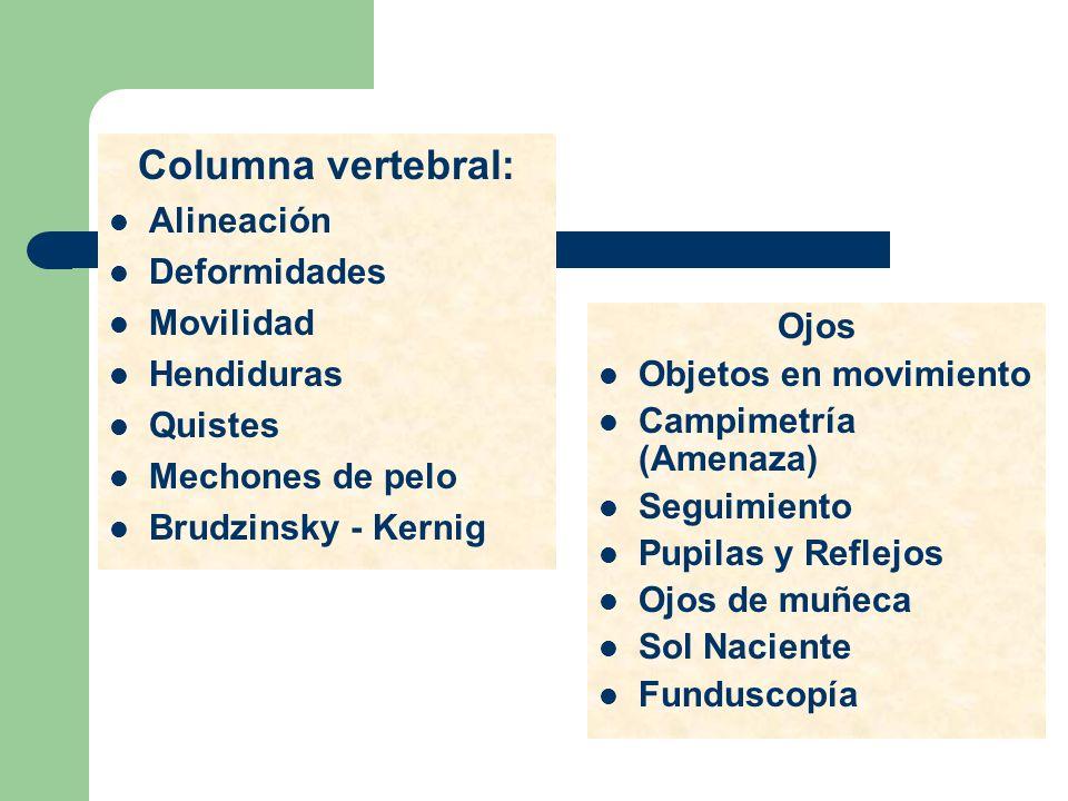 Columna vertebral: Alineación Deformidades Movilidad Hendiduras