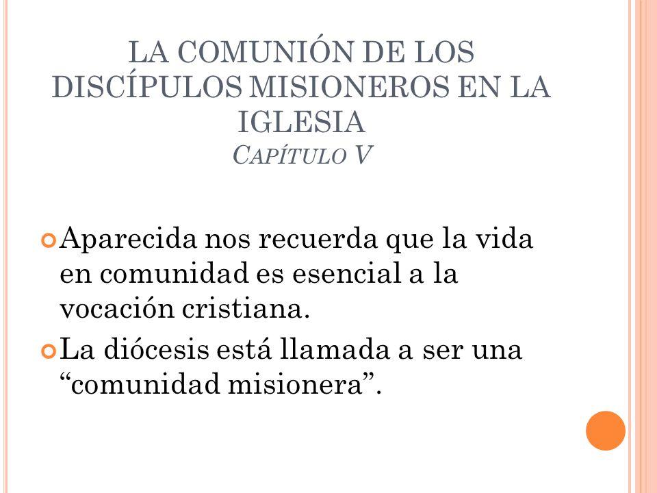 LA COMUNIÓN DE LOS DISCÍPULOS MISIONEROS EN LA IGLESIA Capítulo V