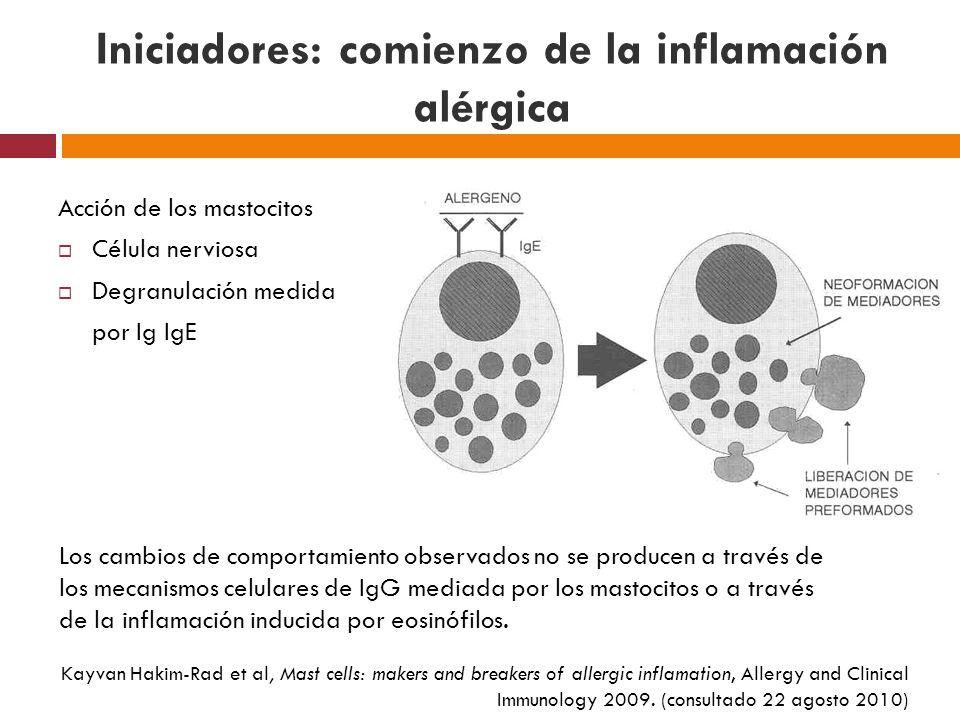 Iniciadores: comienzo de la inflamación alérgica