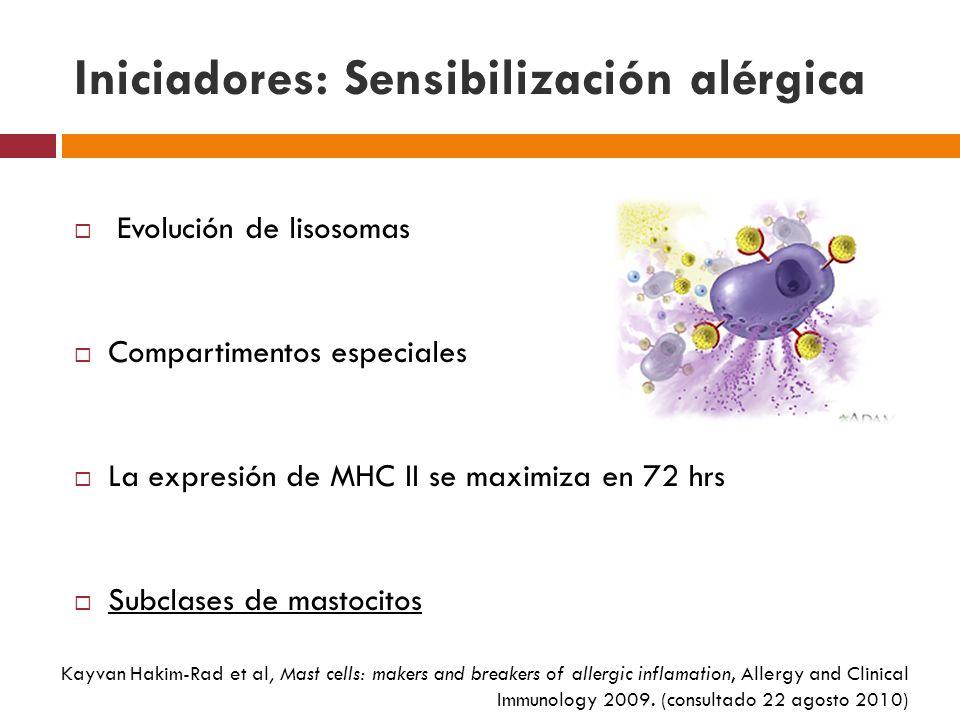 Iniciadores: Sensibilización alérgica