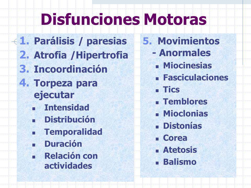 Disfunciones Motoras Parálisis / paresias Atrofia /Hipertrofia