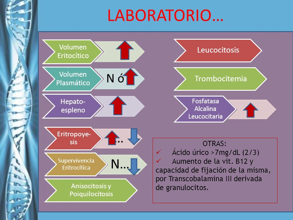 LABORATORIO… Leucocitosis Trombocitemia Anisocitosis y Poiquilocitosis