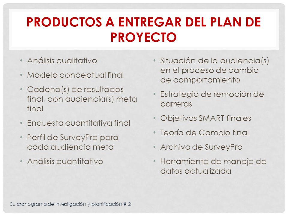 Productos a entregar del plan de proyecto