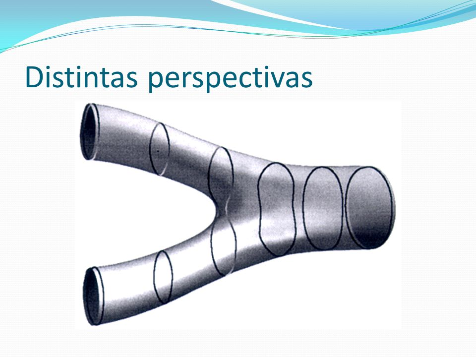 Distintas perspectivas