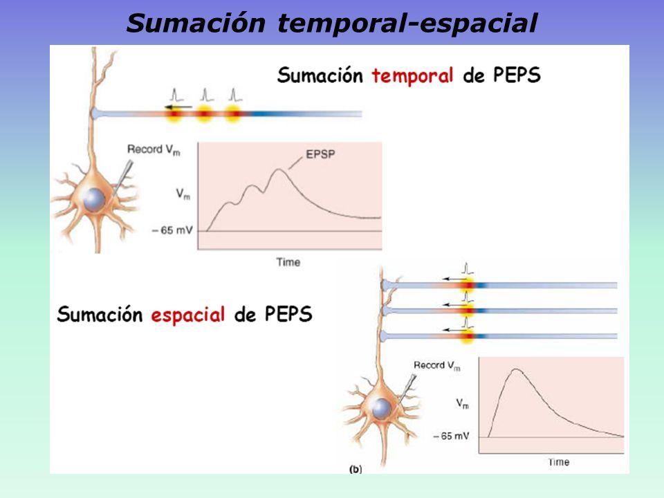Sumación temporal-espacial