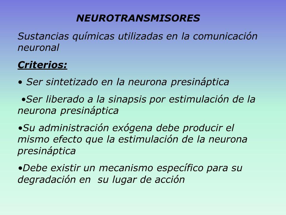 NEUROTRANSMISORES Sustancias químicas utilizadas en la comunicación neuronal. Criterios: Ser sintetizado en la neurona presináptica.