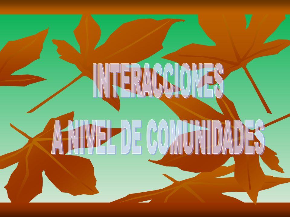 INTERACCIONES A NIVEL DE COMUNIDADES