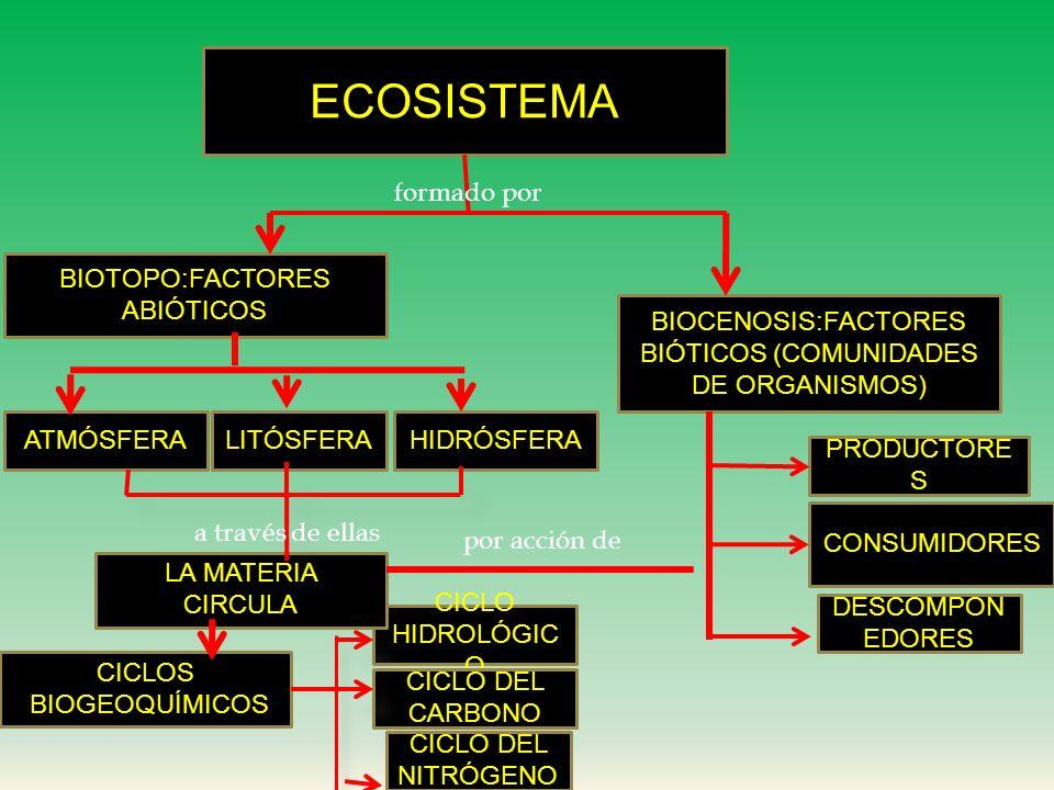 ECOSISTEMA formado por BIOTOPO:FACTORES ABIÓTICOS
