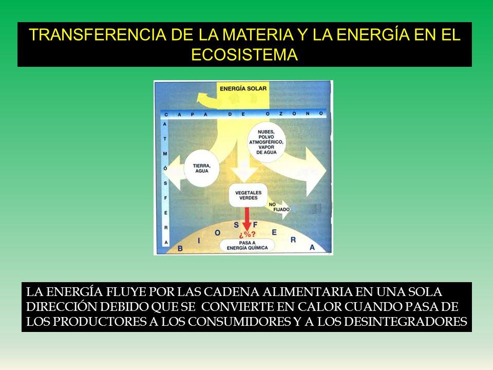 TRANSFERENCIA DE LA MATERIA Y LA ENERGÍA EN EL ECOSISTEMA