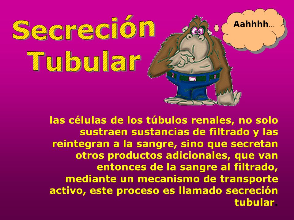 SecreciónTubular. Aahhhh...